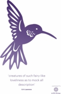 Hummingbird A4 Poster Purple